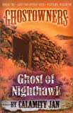 Ghost of Nighthawk (Ghostowners #2)