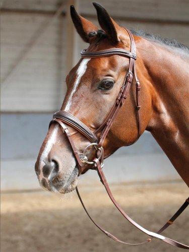 Harry's Horse Schwedische Trense Soft braun pony