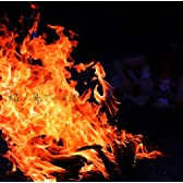 焔丿鳥(ほむらのとり) ~「火」