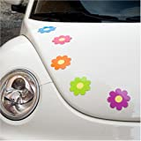 Daisy Car Magnets