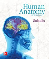 Human Anatomy, 5th Edition Front Cover