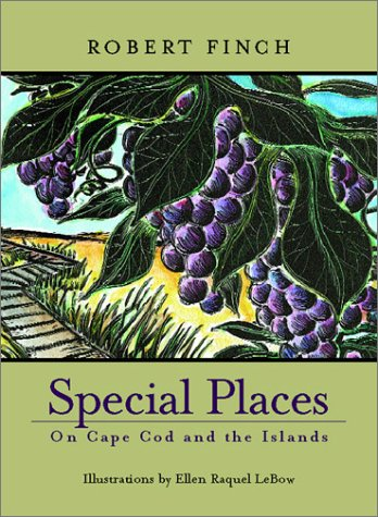 essays on special places A special place essays i remember as a young child every summer going to minnetonka and visiting my aunt through these visits we became very close she always treated me as if i was her own.