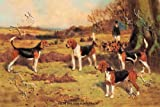 Art Poster, Beagles - 27.5 x 18.75 Reviews
