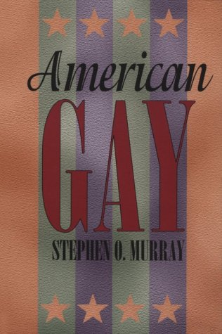 American Gay (Worlds of Desire: The Chicago Series on Sexuality, Gender, and Culture)