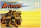 img - for Along Route 66 in Northern Arizona (1940's Souvenir Postcard Folder) #D-7078 book / textbook / text book