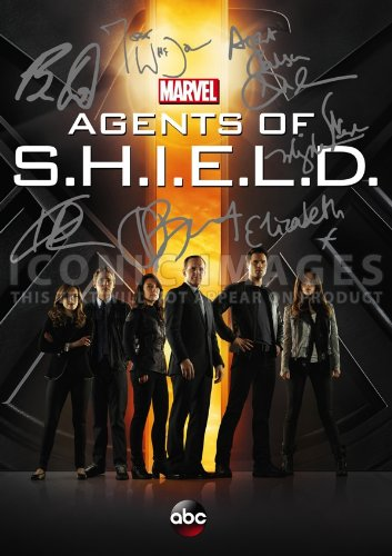 Agent Of SHEILD