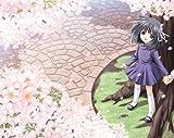 それは舞い散る桜のように 完全版 初回限定版