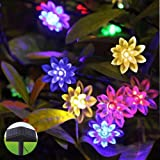 InnooTech Solar String Light RGB 80 LED Double Lotus Fairy Lights with Two Tilted solar panels for Party Wedding Garden