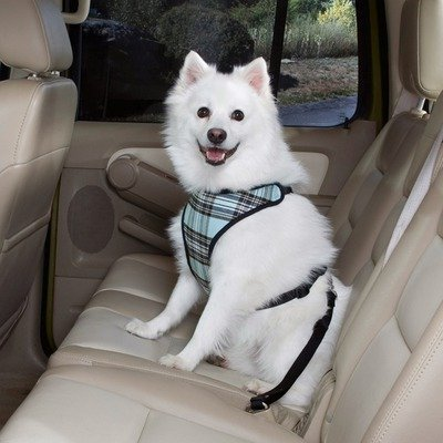 Pet Gear Car Seat front-392034