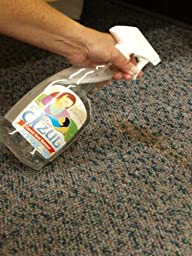 St. Anne\'s Carpet Stain Remover, Pro-Strength Carpet Spotter and Stain Remover, Blasts Toughest Stains (EA)