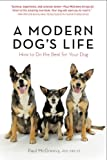 Paul McGreevy A Modern Dog's Life: How to Do the Best for Your Dog