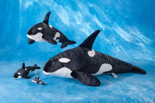Giant Killer Whale Stuffed Animal Information Keywords And Pictures