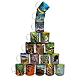 Hot Muggs-Wild Focus - Entire Collection (set Of 17)