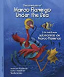 Marco Flamingo Under the Sea / Las aventuras submarinas de Marco Flamenco (Marco Flamingo (Bilingual Hardcover))