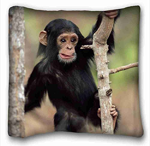 Custom ( Monkeys Animal Chimpanzee ) Pillowcase Cover 16