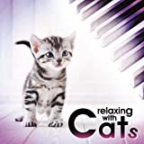 猫と楽しむクラシック