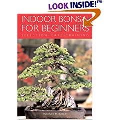 Indoor Bonsai for Beginners: Selection Care Training (Paperback)