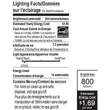 EarthTronics AT14SW1B 14-Watt 2700K A style Compact Florescent Light Bulb, Soft white