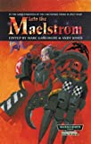 img - for Into the Maelstrom (Warhammer 40,000) book / textbook / text book