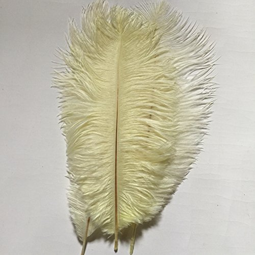 20pcs Natural 10-12inch(25-30cm) Ostrich Feathers Plume for Wedding Centerpieces Home Decoration (ivory)