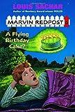 Flying Birthday Cake? (Marvin Redpost 6, paper)
