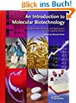 An Introduction to Molecular Biotechn...