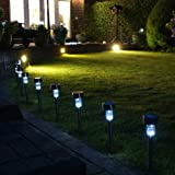 White Solar Garden Path Lights, Stainless Steel, 10 Piece