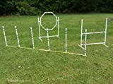 Dog Agility Equipment Complete Package