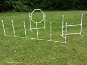 Dog Agility Equipment Complete Package.
