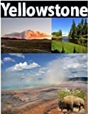 Yellowstone National Park: picture guide to Yellowstone