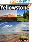 Yellowstone National Park: picture gu...