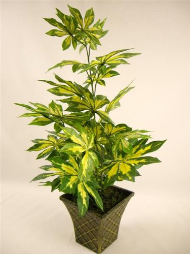 47cm Potted Artificial Silk Variegated Fatsia Japonica Plant ~ Office Plant in a Pot ~ Home & Conservatory Decoration