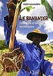 Le bananier : Un si�cle d'innovations...