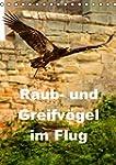 Raub- und Greifv�gel im Flug (Tischka...