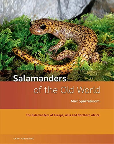 Salamanders of the Old World: The Salamanders of Europe, Asia and Northern Africa