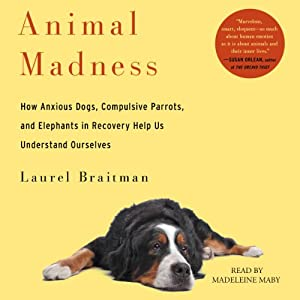 Animal Madness: How Anxious Dogs, Compulsive Parrots, Gorillas on Drugs, and Elephants in Recovery Help Us Understand Ourselves | [Laurel Braitman]