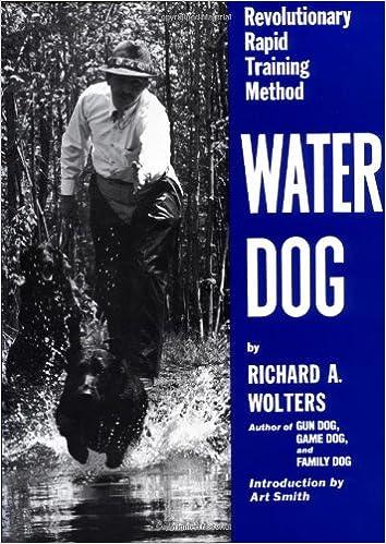 Water dog training supplies