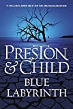 img - for Blue Labyrinth (The Pendergast Novels) book / textbook / text book