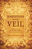 Habitations of the Veil: Metaphor and the Poetics of Black Being in African American Literature (Philosophy and Race)