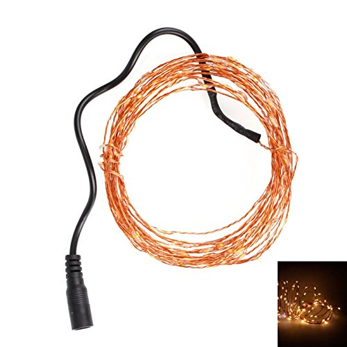 Holiday Lights - Ip68 5M 6W 100Led 0603 Warm White Light Christmas Decorations Copper Led Light Strip (12V)