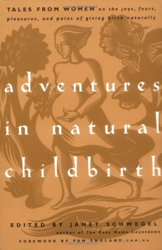 Adventures In Natural Childbirth: Tales From Women On The Joys, Fears, Pleasures, And Pains Of Giving Birth Naturally front-904702