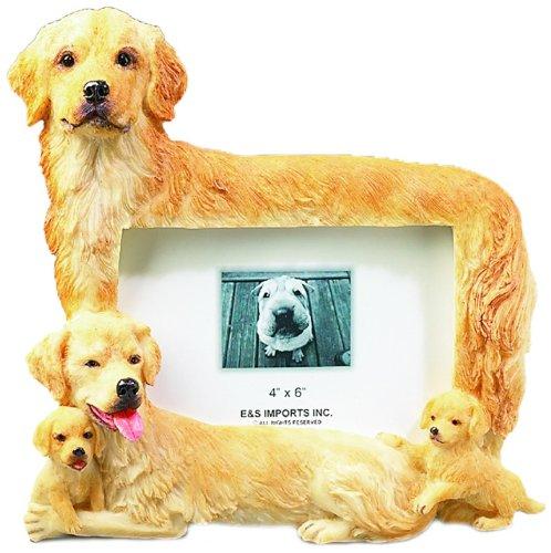 E&S Pets 35257-2 Large Dog Frames