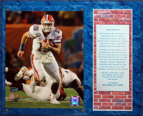 tim-tebow-florida-gators-promise-speech-8x10-photo-stat-plaque-blue
