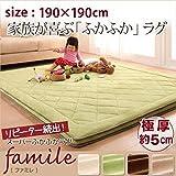 スーパーふかふかラグ 【famile】ファミレ 190×190cm ブラウン