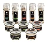 The Organic Matched Pair Sea Salt Collection - 10 Pack