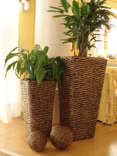 """2er Set Wasserhyazinthe Blumenkübel Übertöpfe Pflanzkübel Blumentopf """"Phuket"""" braun 87/62cm hoch"""