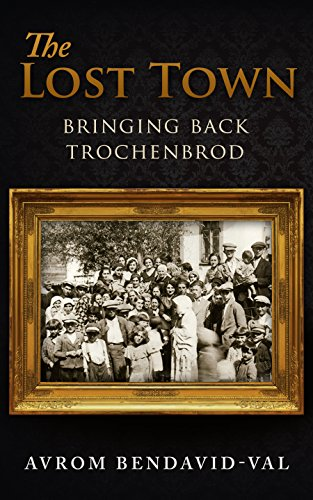 The Lost Town: Bringing Back Trochenbrod by Avrom Bendavid-Val ebook