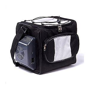12V Mini Fridge Car Refrigerators Bag Car Cool Box 12 Liters