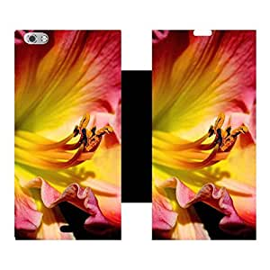 Phone Candy Designer Flip Cover with hi-res printed Vinyl sticker wrap-around for Micromax Canvas Sliver 5 Q449