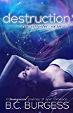Destruction (The Mystic Series #5)